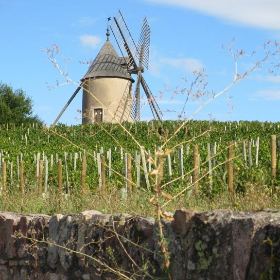 LE moulin-à-vent