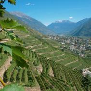 Valtellina 4