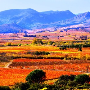 Languedoc paysage